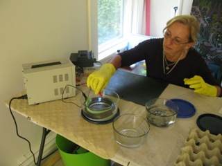 Lori Lacy is showing how to anodize her Titanium jewelry